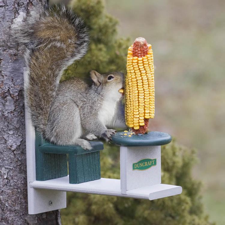 Squirrel Table and Chair - Yard Squirrel Dining Set - Corn Cob Squirrel Table