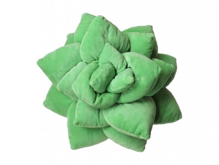 Succulent Cactus Decor Pillow