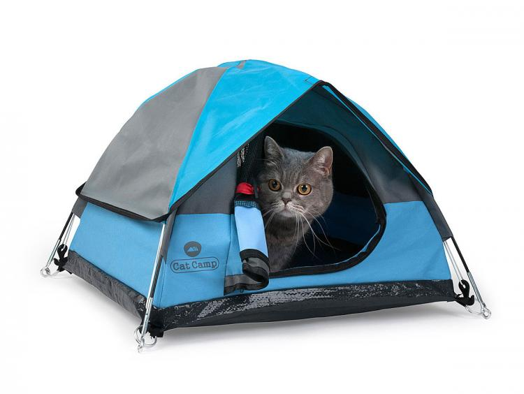 Cat Camp - Mini Cat Camping Tent