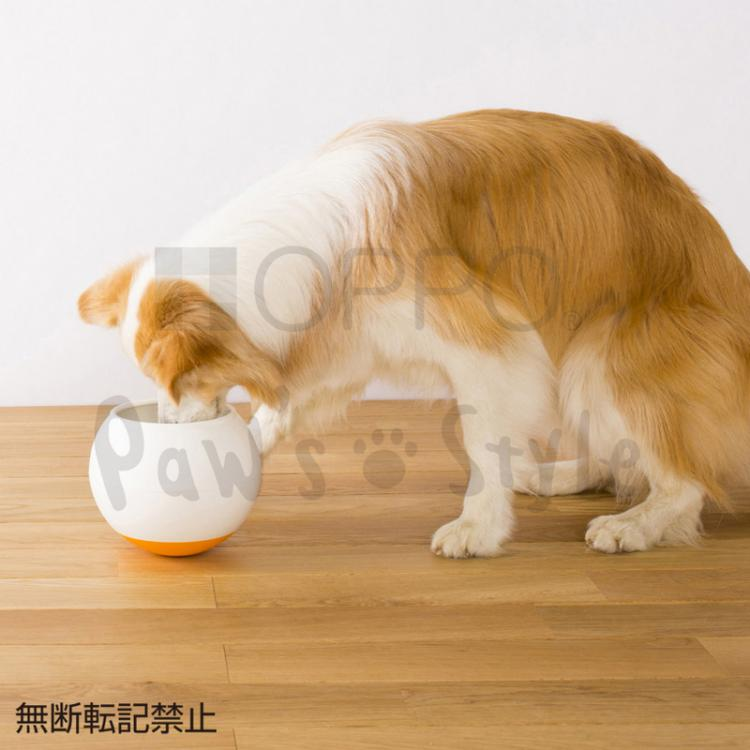 Oppo Food Bowl Slows Down Dogs Eating