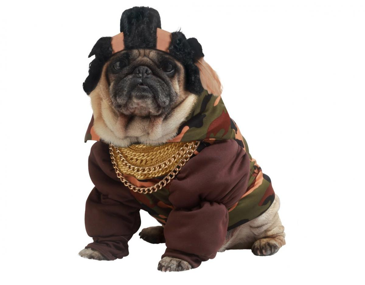 Mr. T Dog Costume