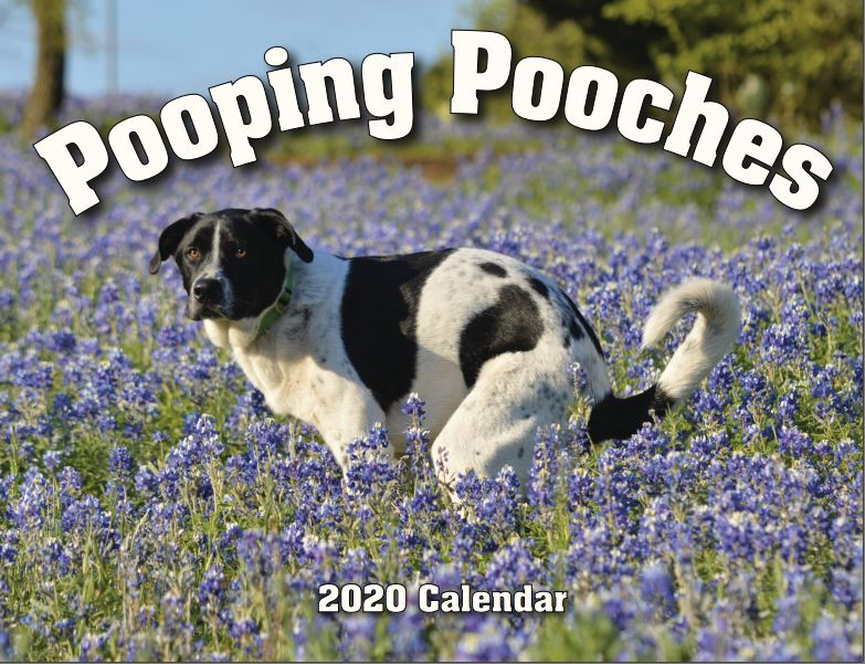 Funny pooping dogs calendar - 2020 pooping pooches calendar white elephant gift idea
