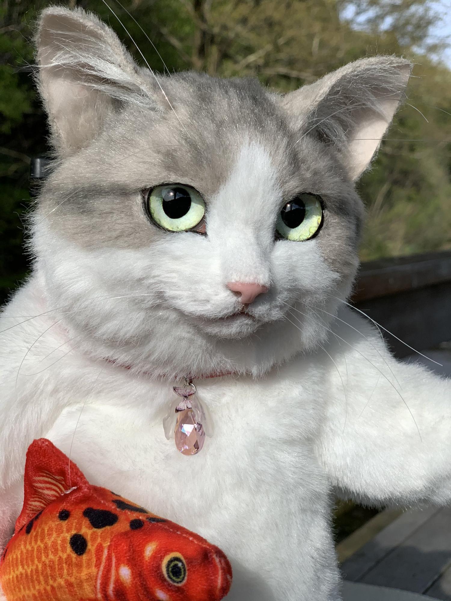 逼真的猫背包看起来像真正的活猫
