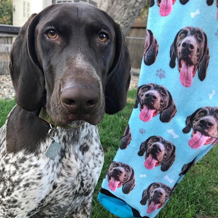 DivvyUp Custom Pet Face Dress Socks - Upload picture of cat or dog printed on dress socks