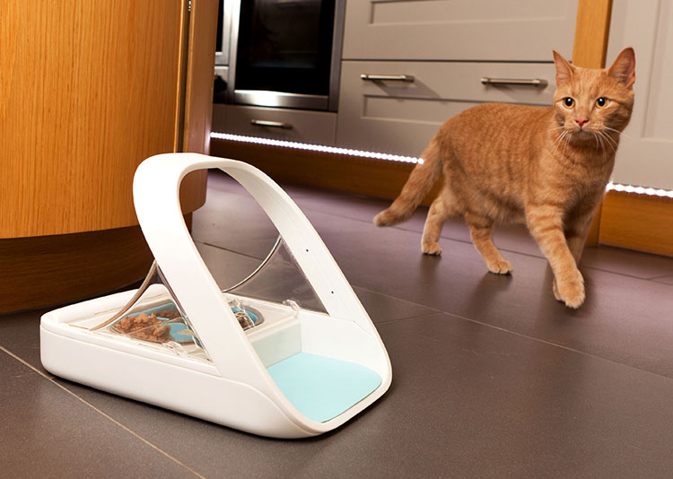 This Pet Feeder Scans Your Pet To Make Sure The Right Pet