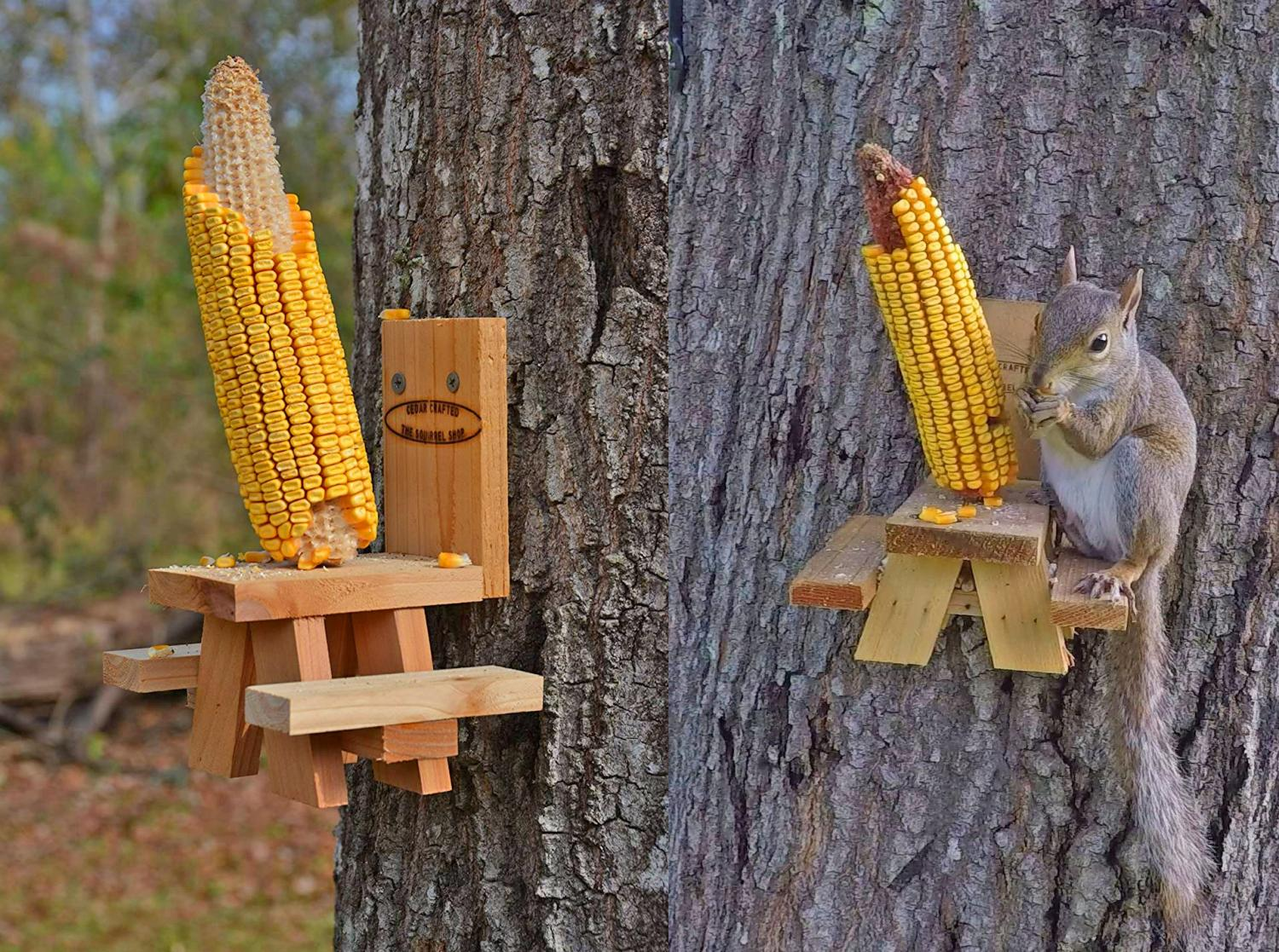 This Picnic Table Squirrel Feeder Lets Your Backyard