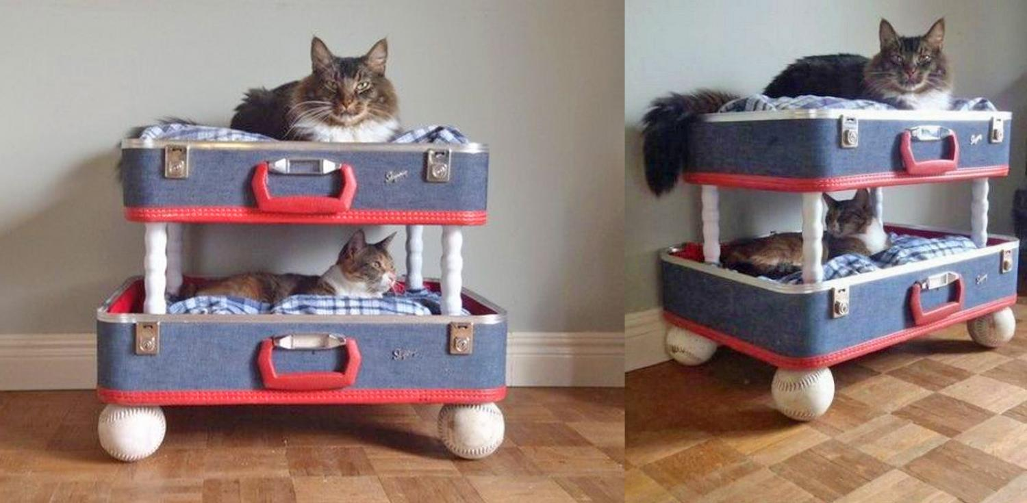 Vintage suitcase cat bunk bed - DIY luggage cat bunk bed