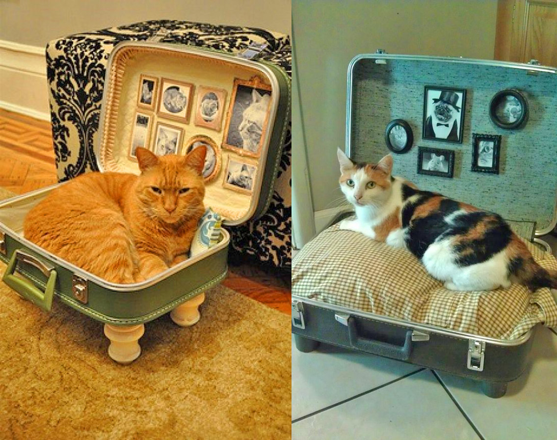 Vintage suitcase cat bed - DIY luggage cat bed
