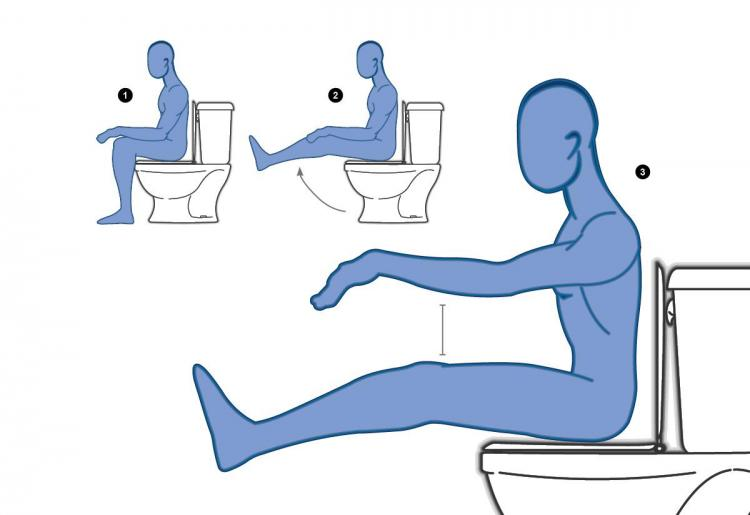 Toilet Yoga Book