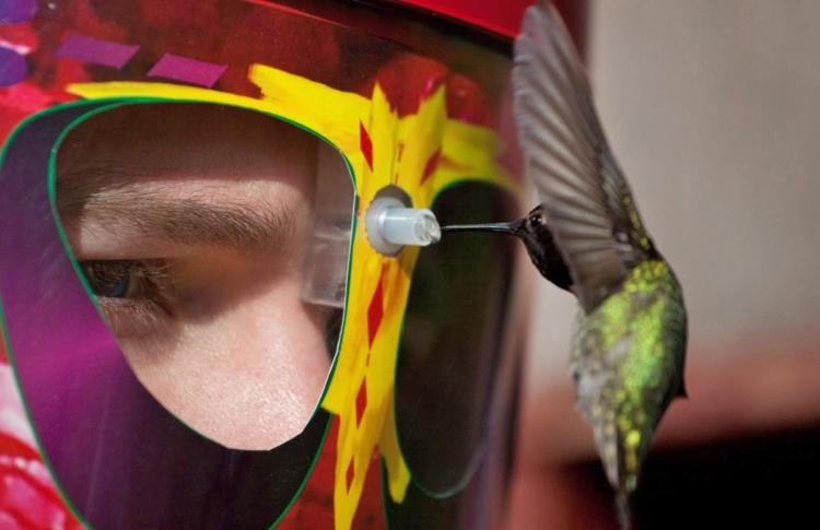 Wearable Hummingbird Feeder Mask