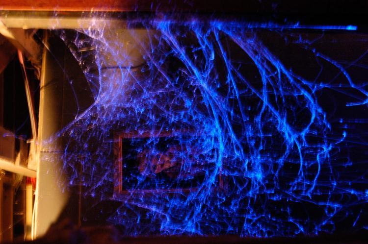 webcaster gun shoots out halloween spider web decorations cobweb gun spider web gun