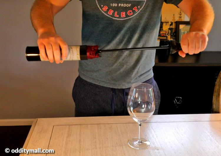 Wine bottle umbrella - Secret umbrella hidden inside fake wine bottle