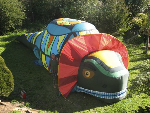Giant inflatable frill neck lizard - Evelyn Roth
