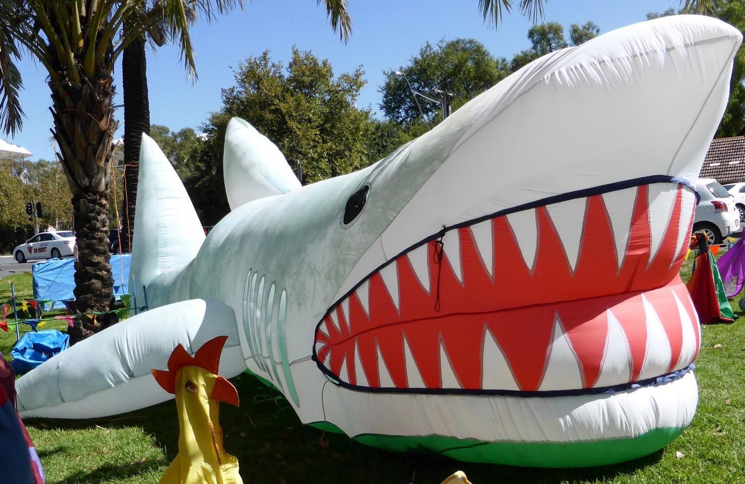 Giant inflatable shark - Evelyn Roth