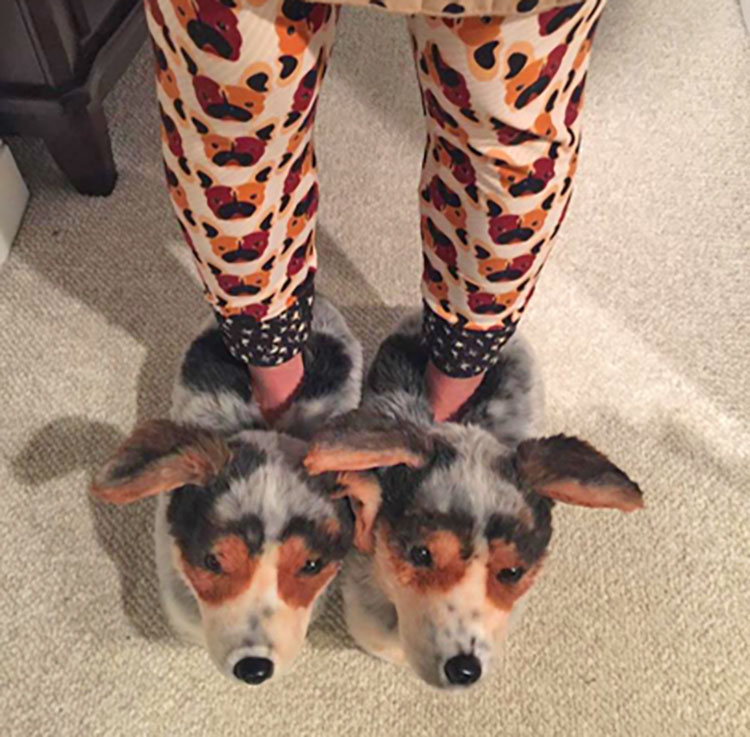 Cuddle Clones Slippers - Custom slippers made to look like your dog or cat - Pet Slippers