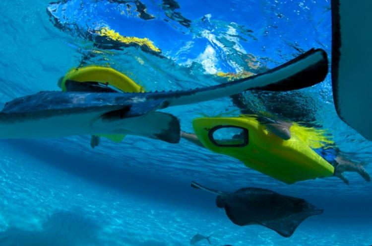 Reefboard: A Dry Snorkel, Gives You a Window To The ...