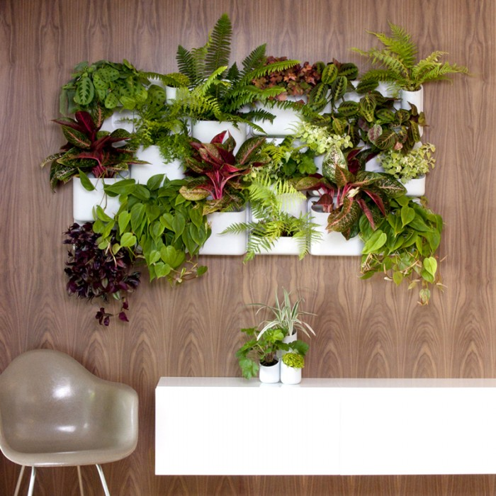 Urban wall planters for Portico anteriore a trave aperta