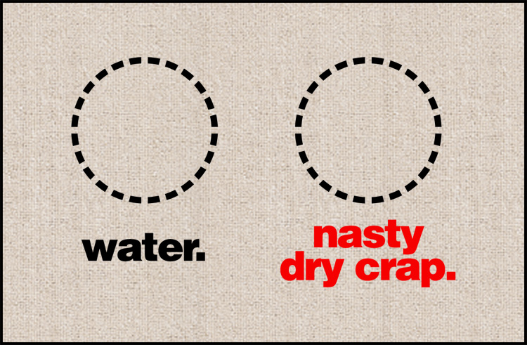 Water and Nasty Dry Crap Dog Food Mat - Funny dog mat