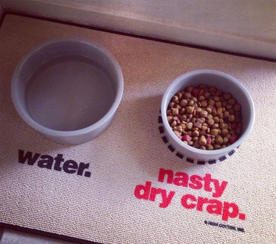 Water / Nasty Dry Crap Dog Mat