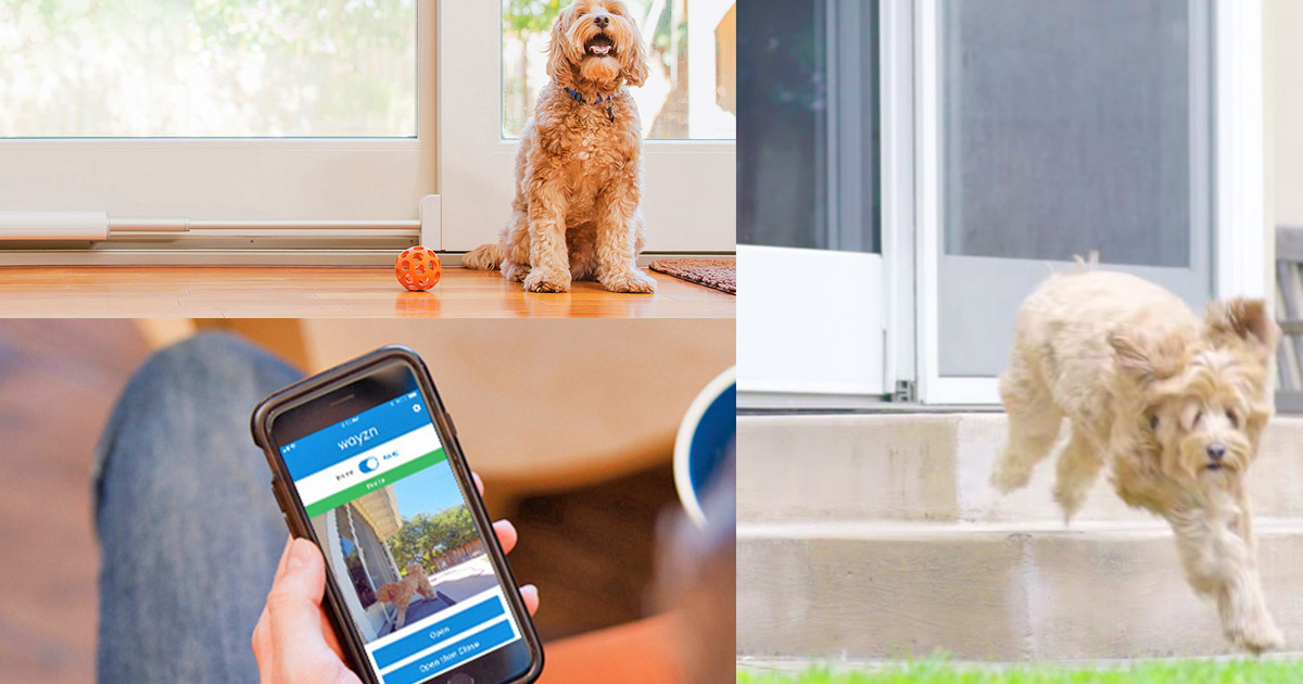 Let Your Dog Out Remotely Through Your Sliding Door With This Genius Gadget