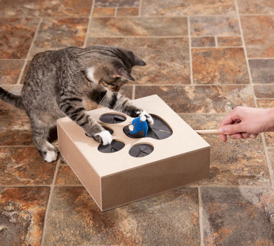 Whack A Mouse Cat Toy