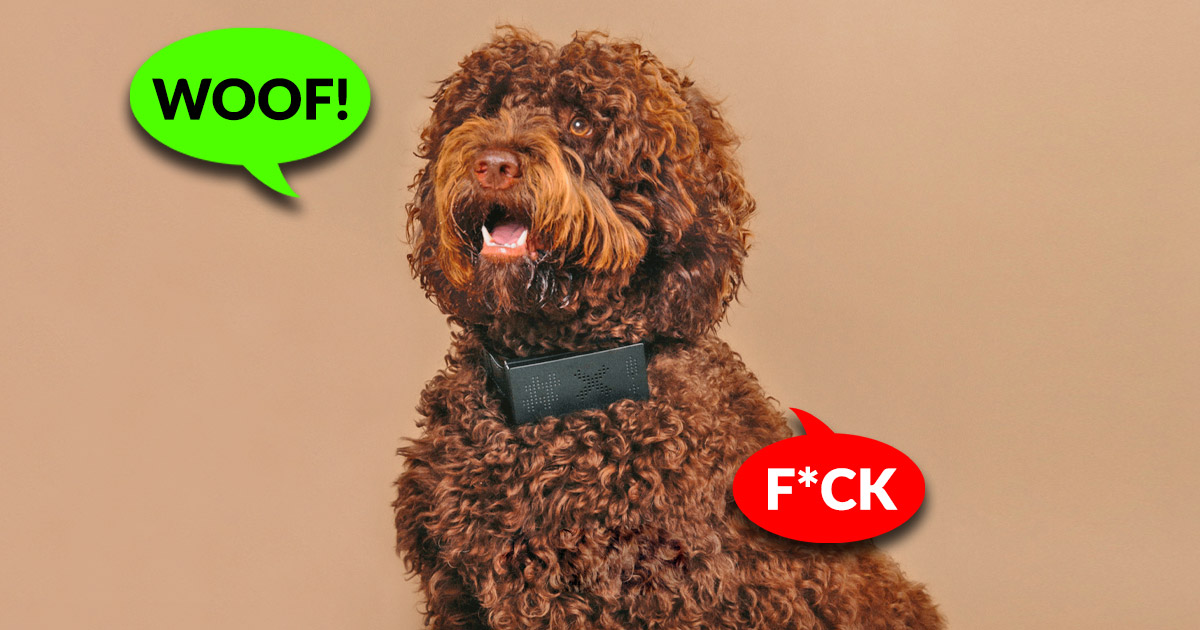 You Can Now Get a Cursing Dog Collar That Will Cuss Every-time Your Dog Barks