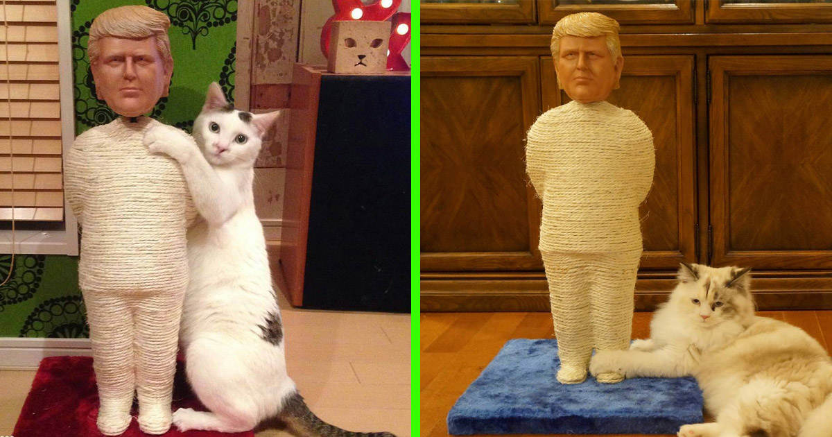 You Can Now Get a Donald Trump Cat Scratching Post