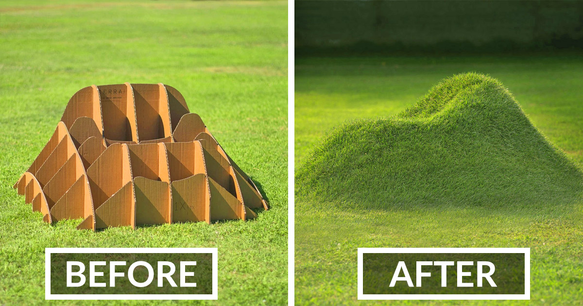 You Can Now Get A Kit That Helps You Create Natural Grass Chairs That Blend Right Into Your Lawn