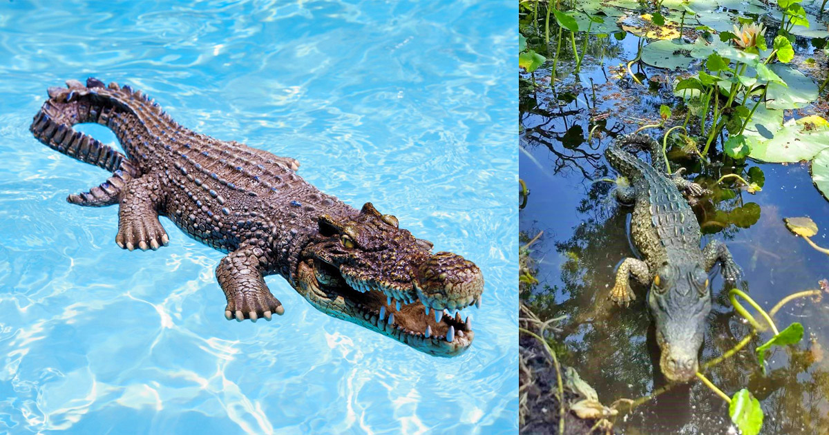 You Can Now Get an Incredibly Realistic Life-size Crocodile Pool Float