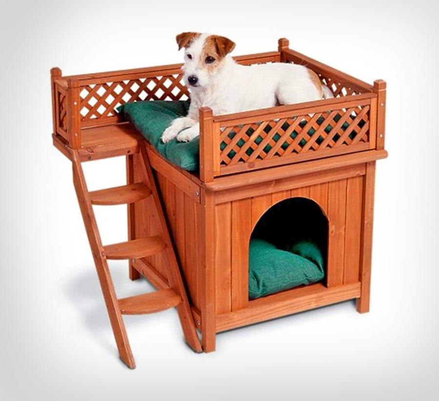 Bunk Beds For Your Dogs Indoor