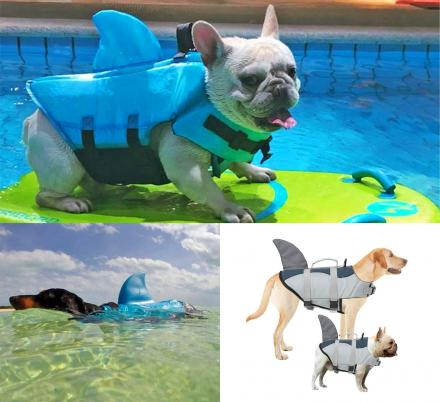 Your Dog Will Surely Look Viscous While Wearing a Shark Fin Dog Life Jacket This Summer