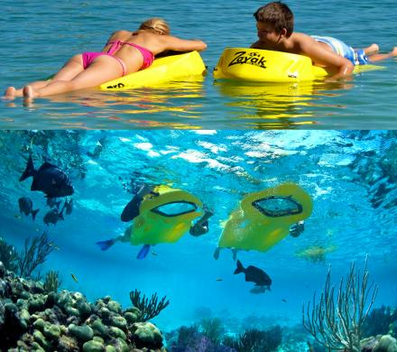 Reefboard: A Dry Snorkel, Gives You a Window To The Underwater Environment Below You
